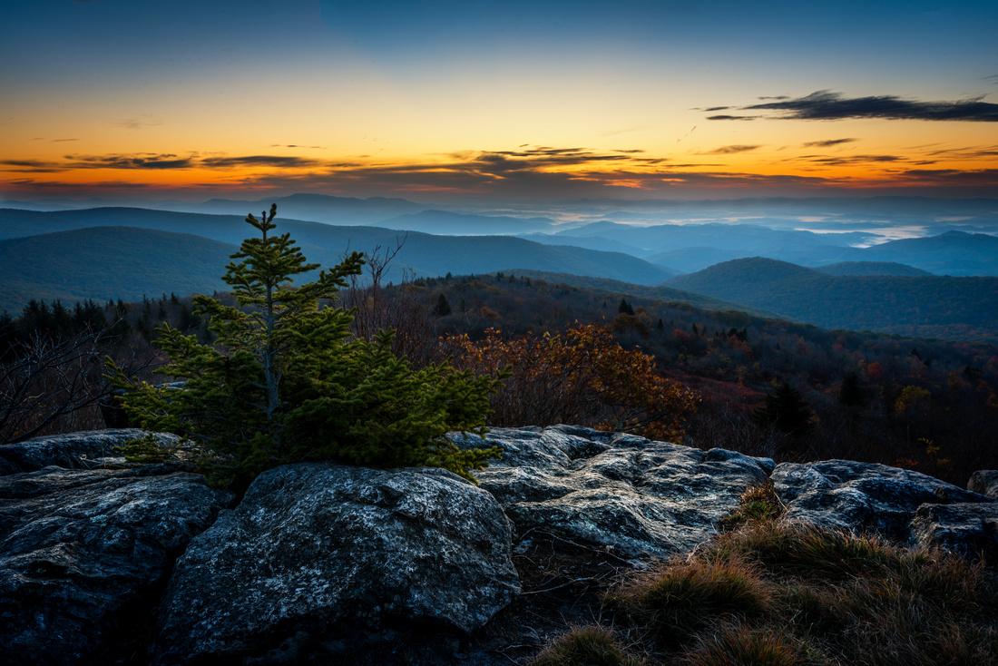 Wilburn Ridge Morning