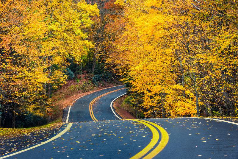 Fall West Virginia Road